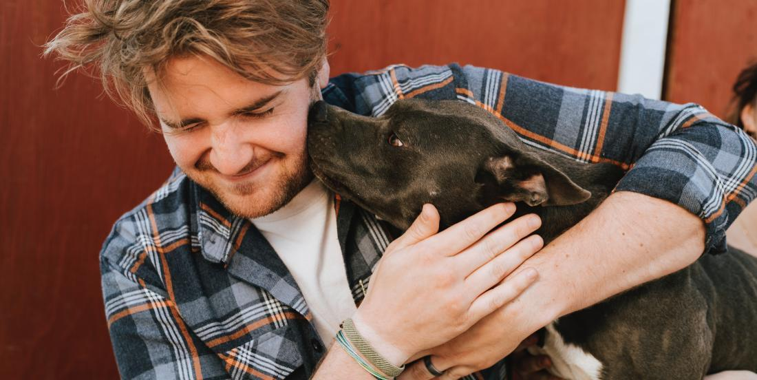 Si votre chien fait l'une de ces 8 choses, cela signifie qu'il vous aime vraiment