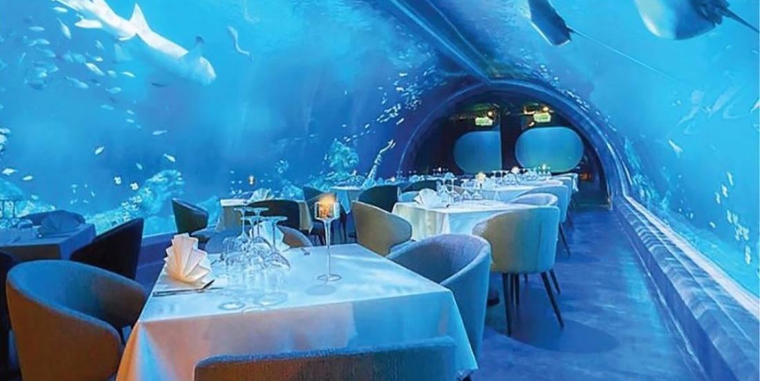 Le plus grand restaurant sous-marin du monde a ouvert ses portes