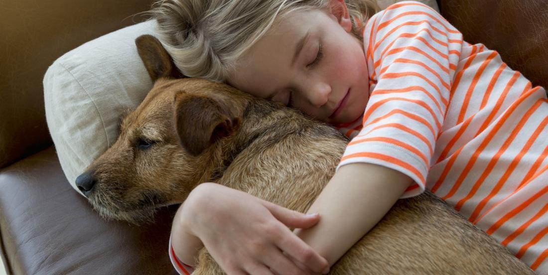 7 bénéfices à dormir avec votre chien!