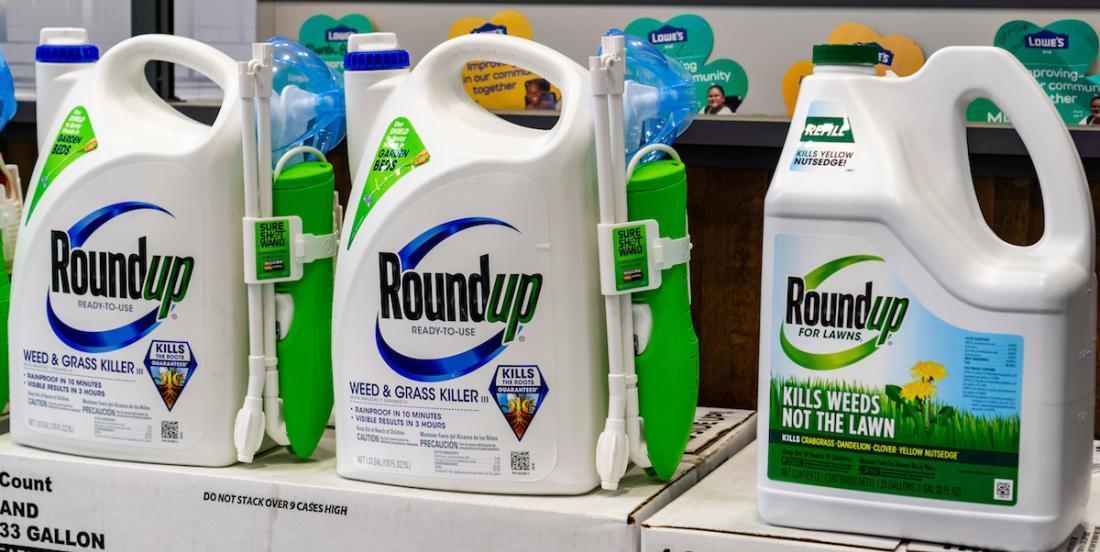 Herbicide Roundup: Montréal banniera l'utilisation du glyphosate sur son territoire