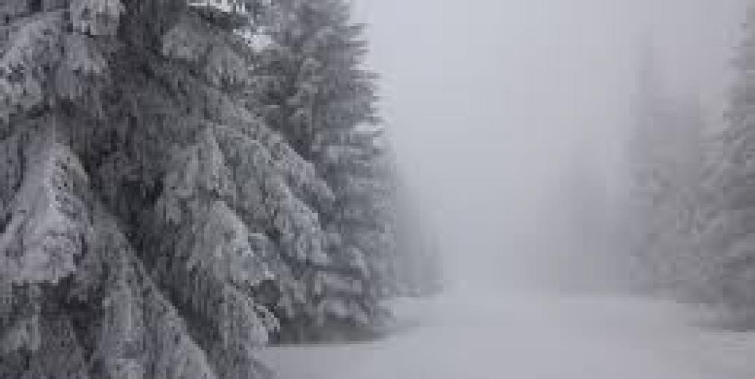 C'est officiel, Noël sera blanc au Québec!