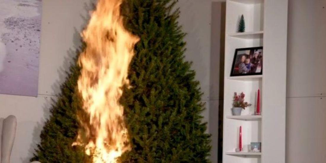 Ce truc tout simple empêchera votre arbre de Noël de prendre feu