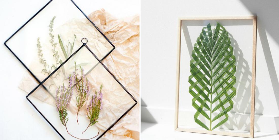 22 idées créatives pour décorer la maison avec des plantes et des fleurs encadrées!