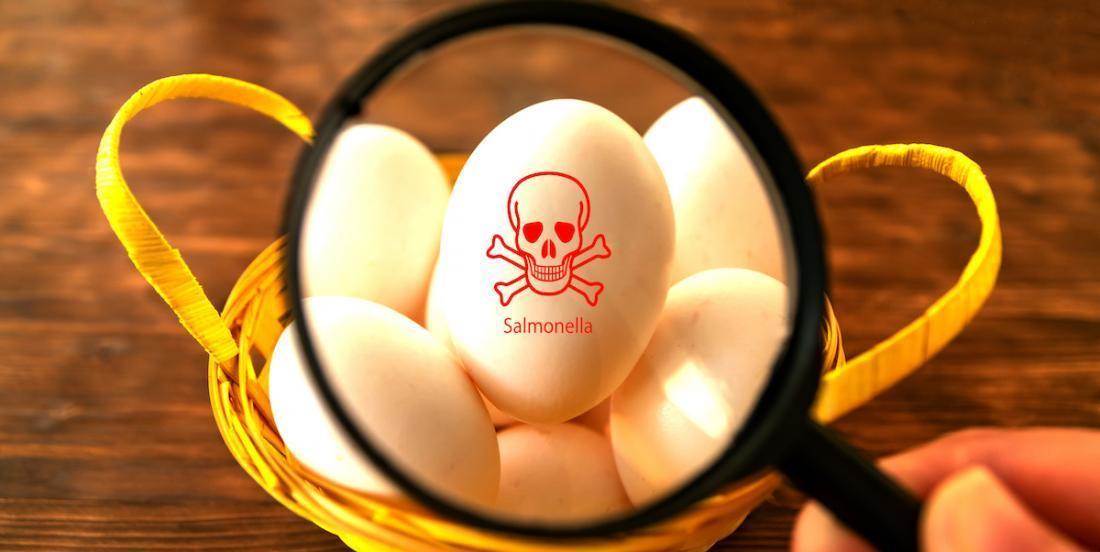 5 conseils pour prévenir la salmonellose