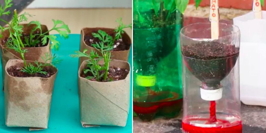 9 objets communs que vous pouvez utiliser pour démarrer vos pousses à la maison!