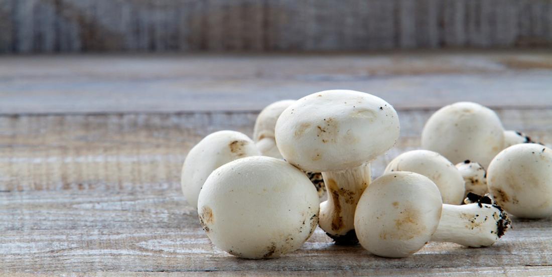 Ce truc vraiment simple vous permettra de conserver plus longtemps vos champignons