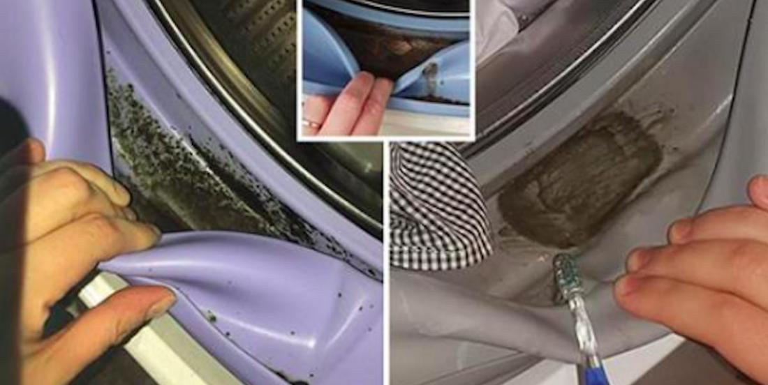 Saviez-vous que votre machine à laver frontale vous rend peut-être malade?