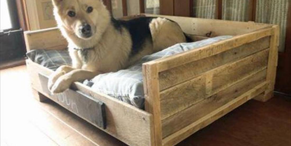 11 idées de lit pour votre animal de compagnie fabriqués seulement à partir de palettes!