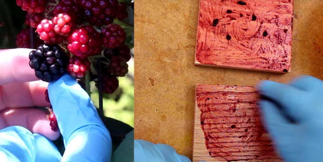 Peinturez votre bois avec des produits de la maison pour un effet extraordinaire!