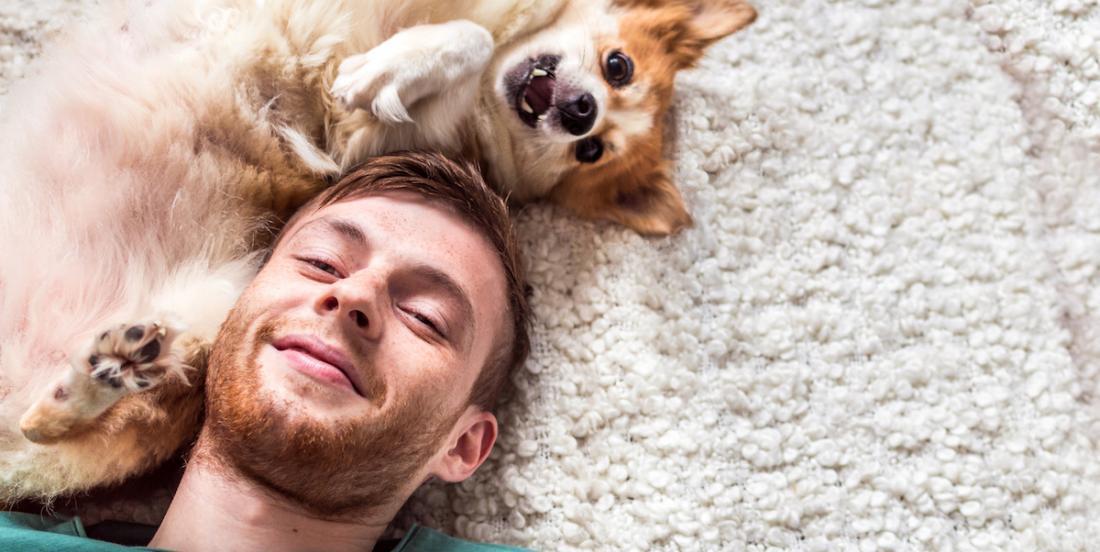 Les propriétaires de chiens vivent plus longtemps