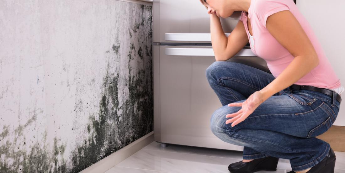 Comment se débarrasser de la moisissure sur toutes les surfaces où elle peut se retrouver dans la maison