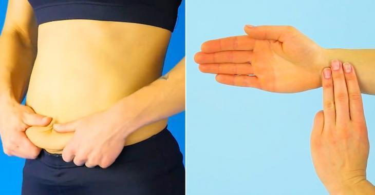 Perdre du poids organe