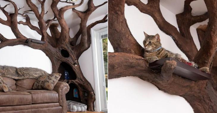 Cet artiste a pris le terme «arbre à chat» au mot!